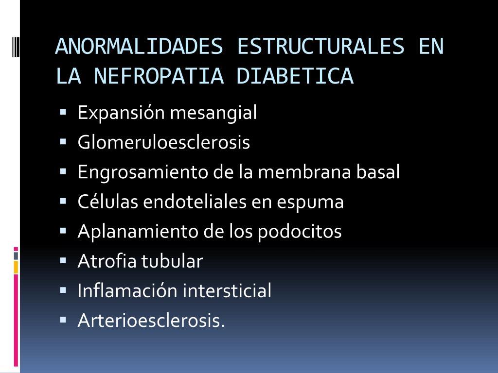 ANORMALIDADES ESTRUCTURALES EN LA NEFROPATIA DIABETICA