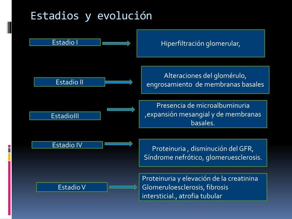 Estadios y evolución