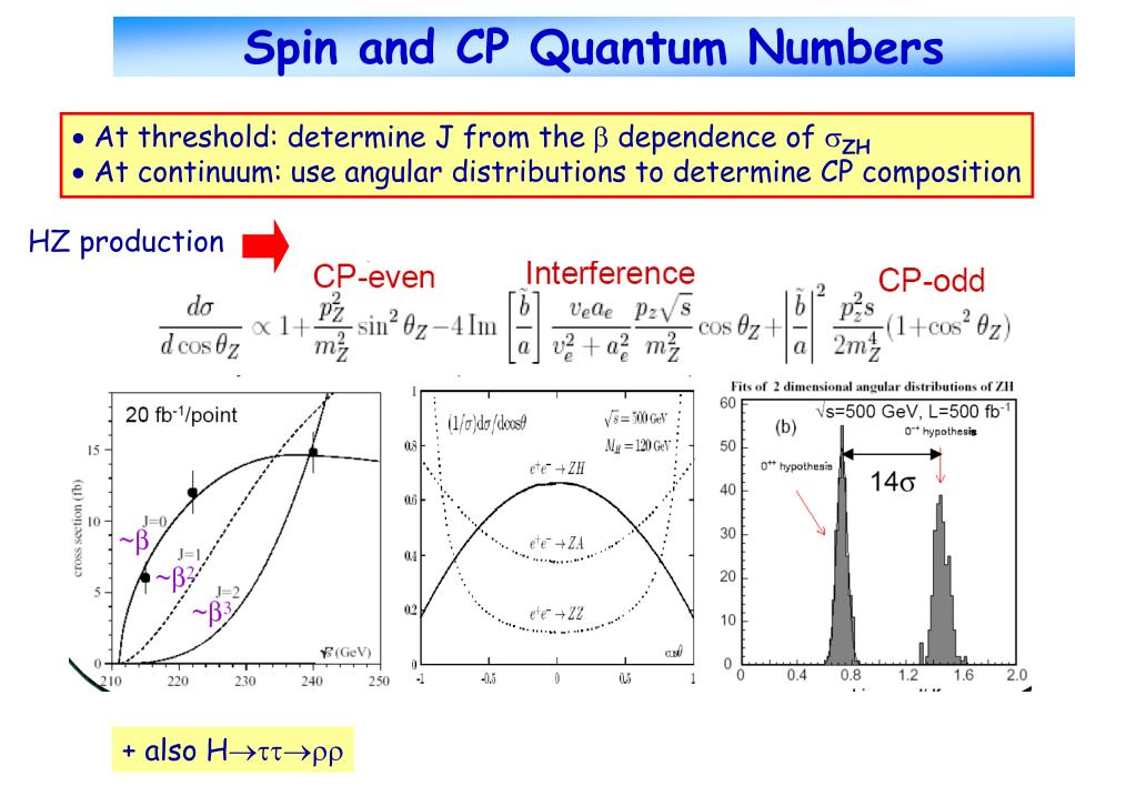 Spin and CP Quantum Numbers