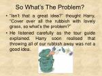 so what s the problem