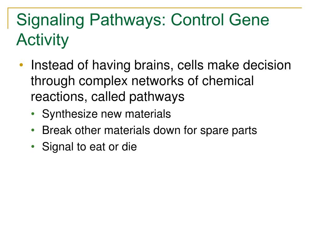Signaling Pathways: Control Gene Activity