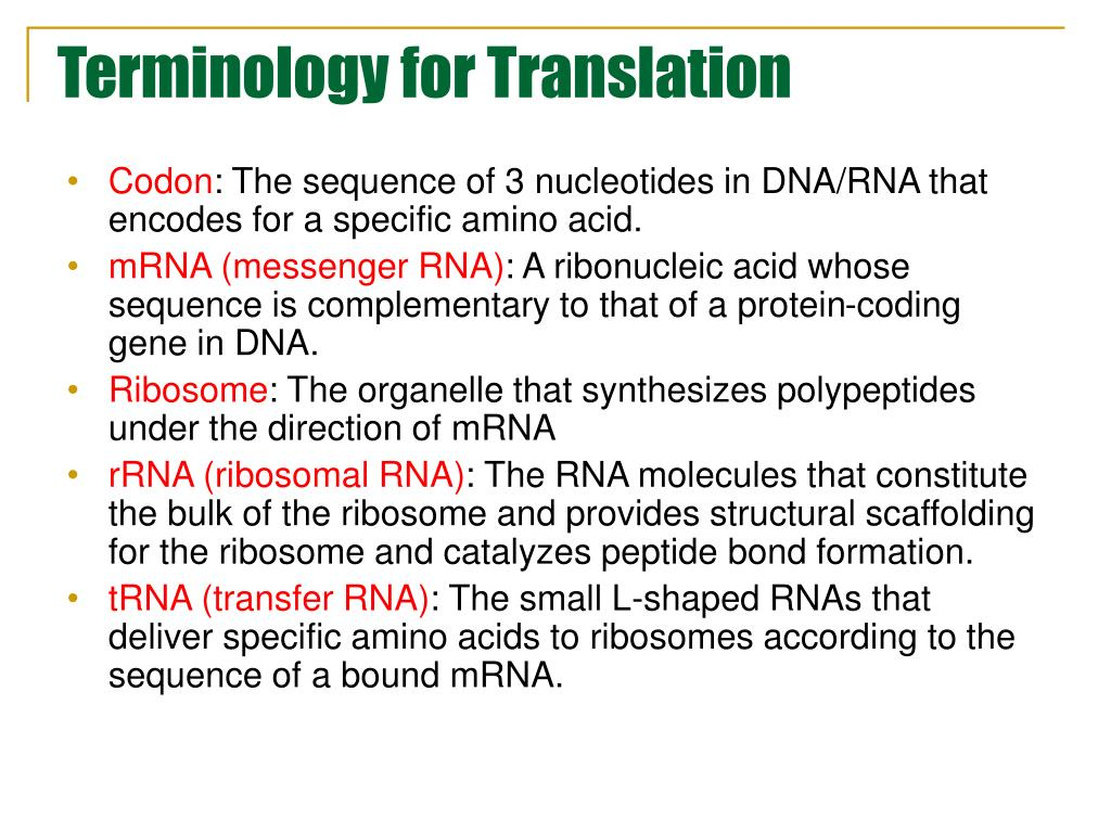 Terminology for Translation