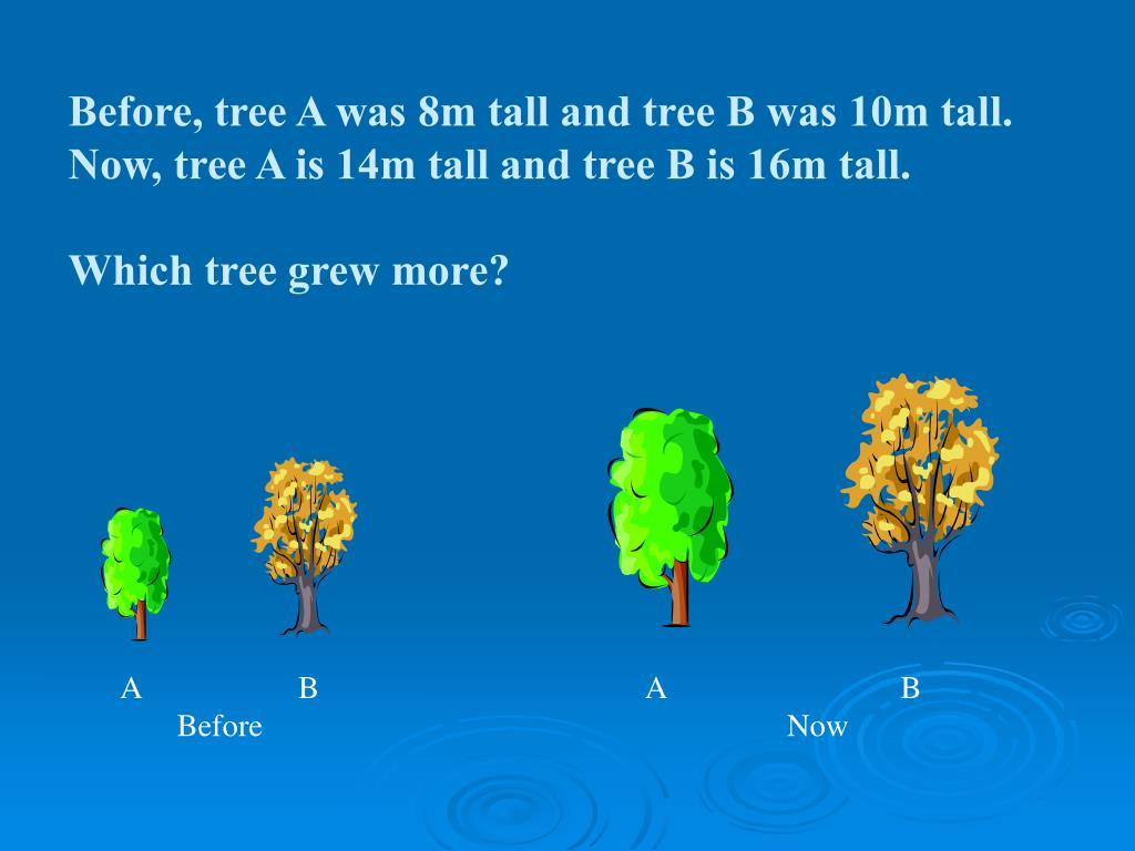 Before, tree A was 8m tall and tree B was 10m tall.  Now, tree A is 14m tall and tree B is 16m tall.