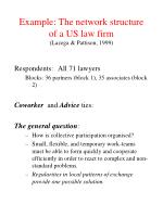 example the network structure of a us law firm lazega pattison 1999