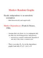 markov random graphs