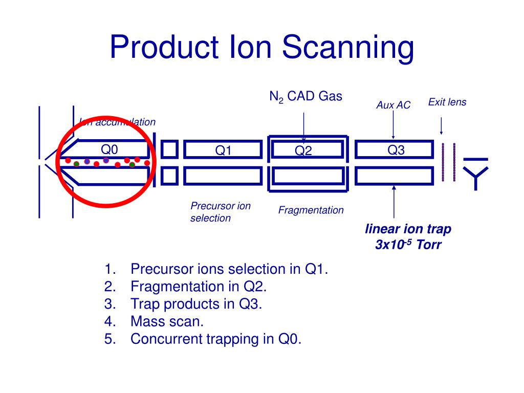 Product Ion Scanning