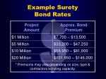 example surety bond rates