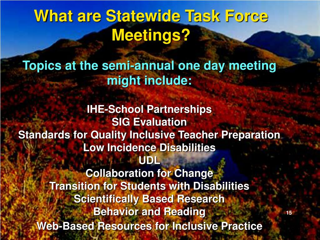 What are Statewide Task Force Meetings?