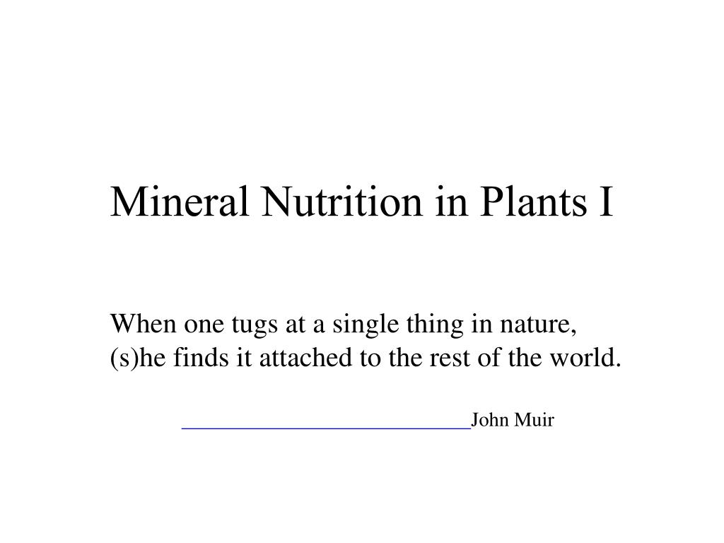 Mineral Nutrition in Plants I
