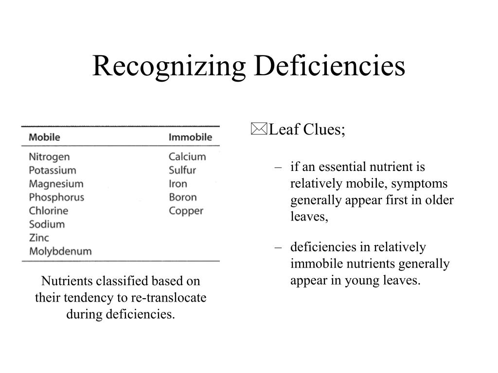 Nutrients classified based on their tendency to re-translocate during deficiencies.