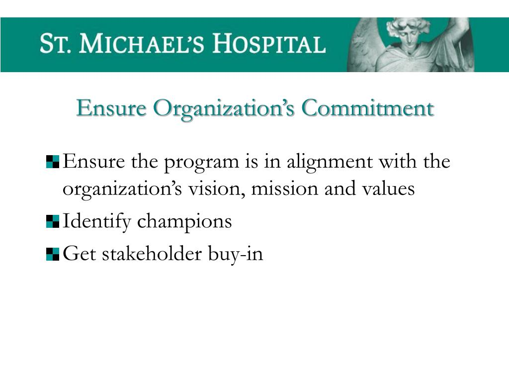 Ensure the program is in alignment with the organization's vision, mission and values