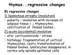 thymus regressive changes