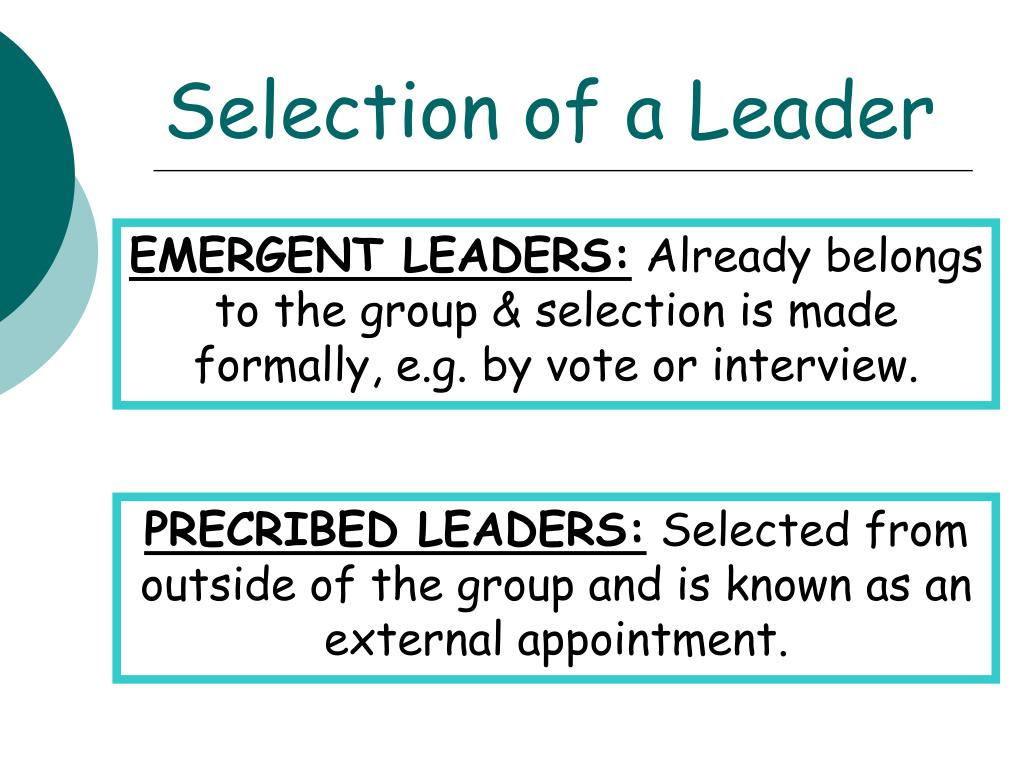 Selection of a Leader