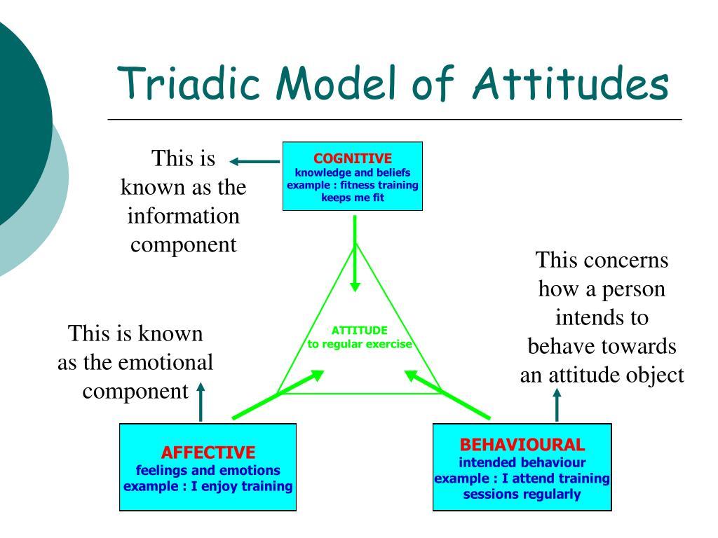 Triadic Model of Attitudes