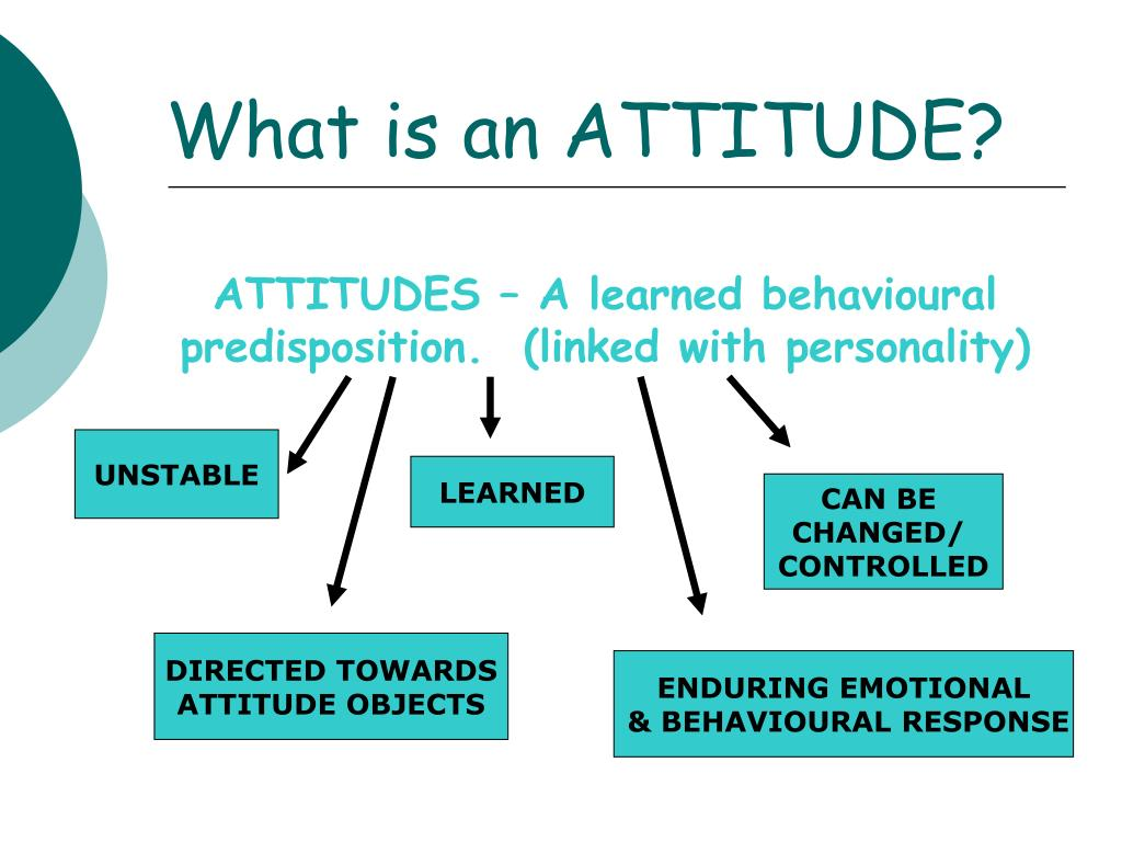 What is an ATTITUDE?