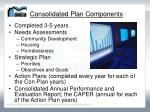 consolidated plan components