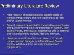 preliminary literature review17
