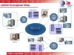 cagrid conceptual view