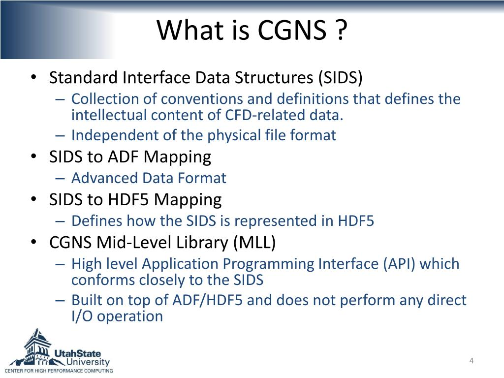 What is CGNS ?