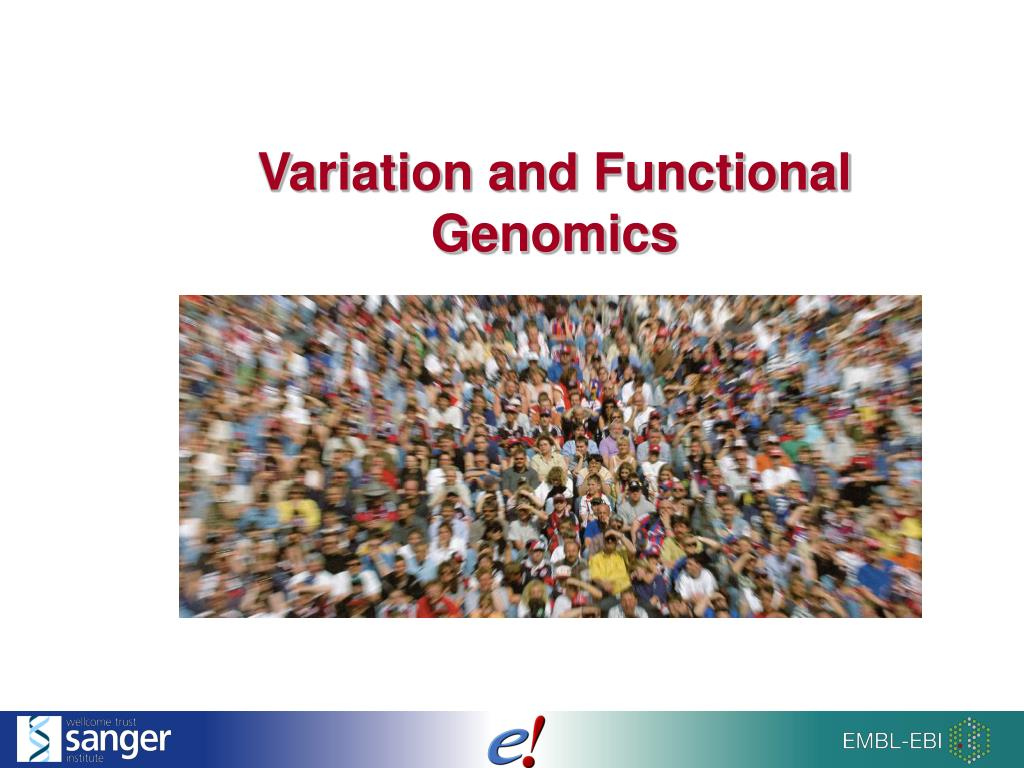 variation and functional genomics l.