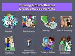 thriving biotech related life science job markets