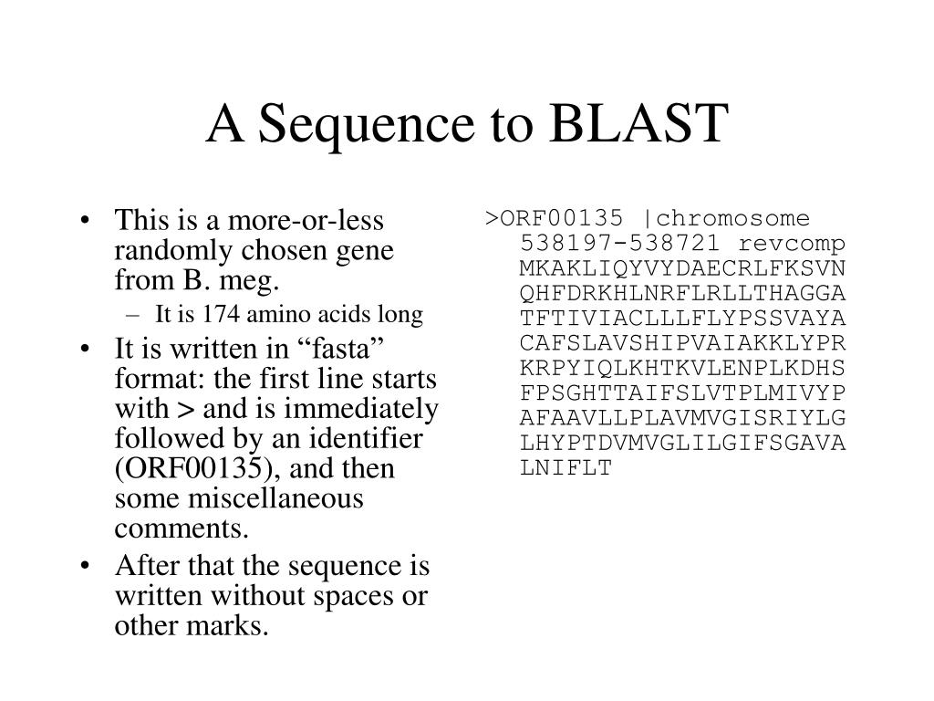 A Sequence to BLAST