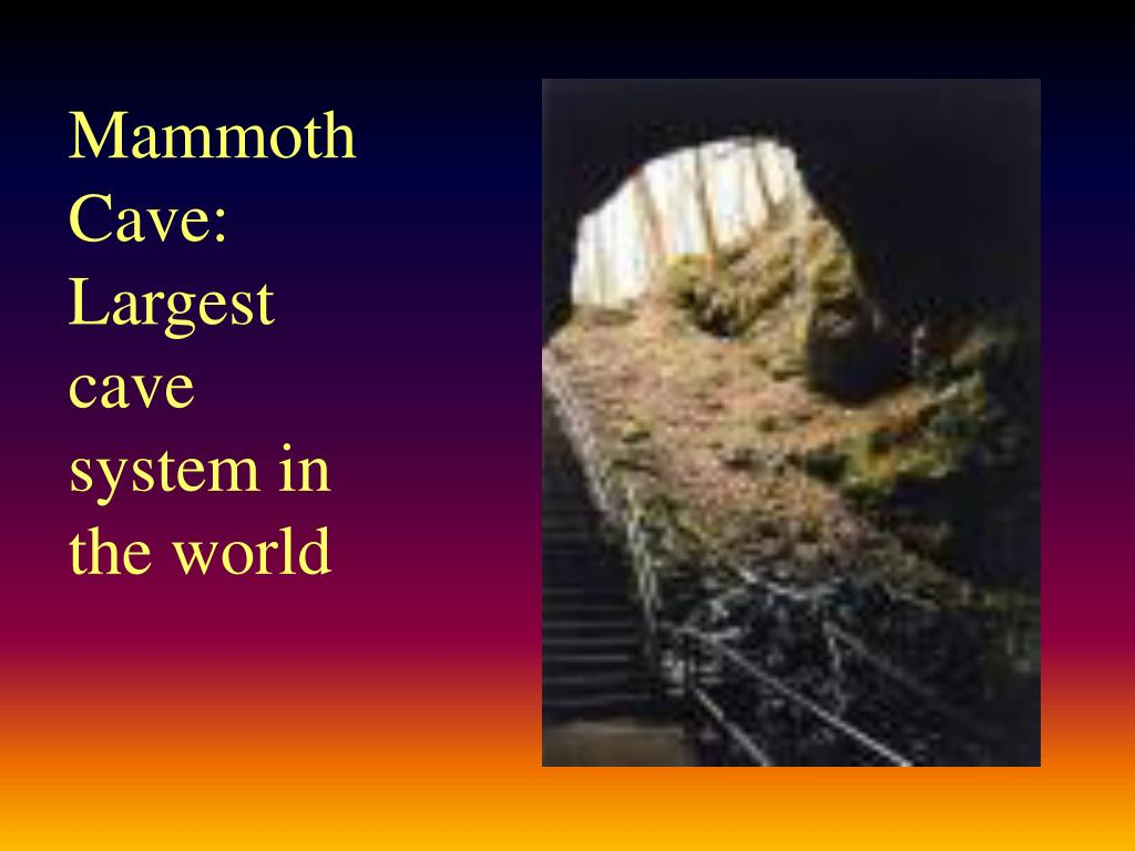 Mammoth Cave: Largest cave system in the world