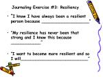 journaling exercise 3 resiliency