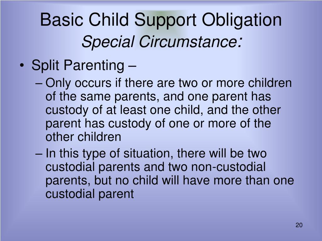 Basic Child Support Obligation