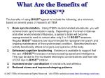 what are the benefits of boss tm