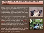 eternalize your pet memories through pet photo blanket