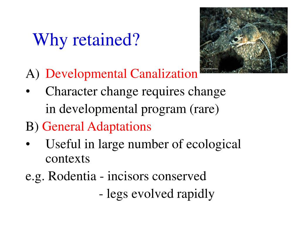 Why retained?