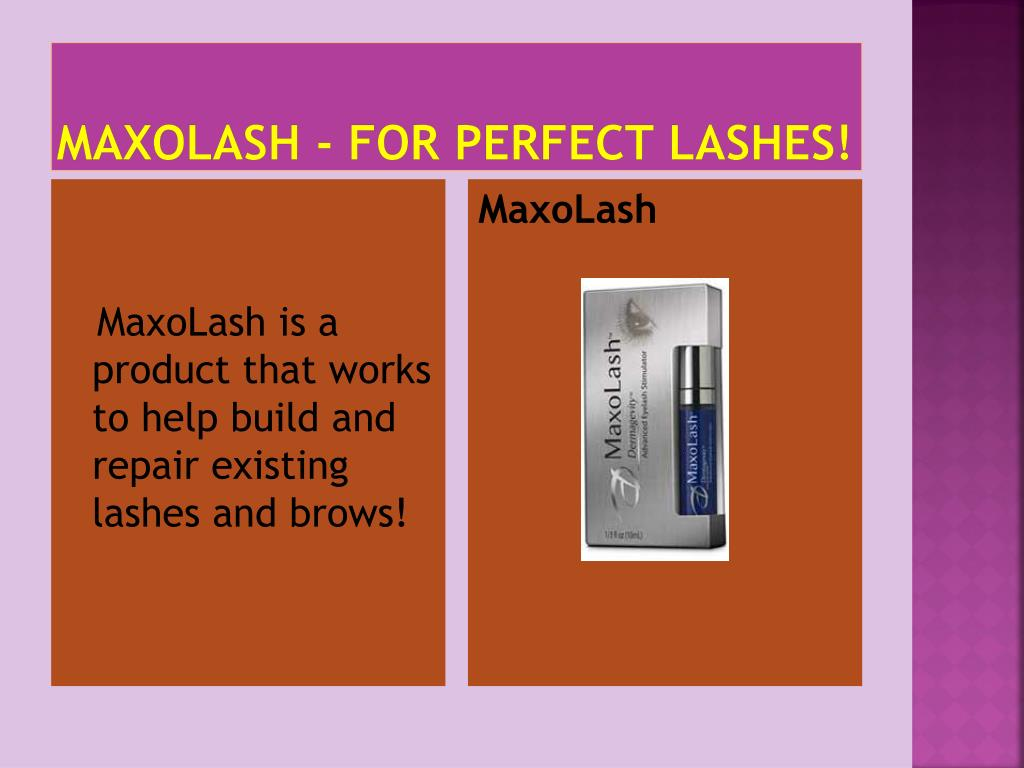 maxolash for perfect lashes l.