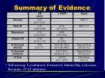 summary of evidence