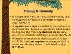 pruning trimming