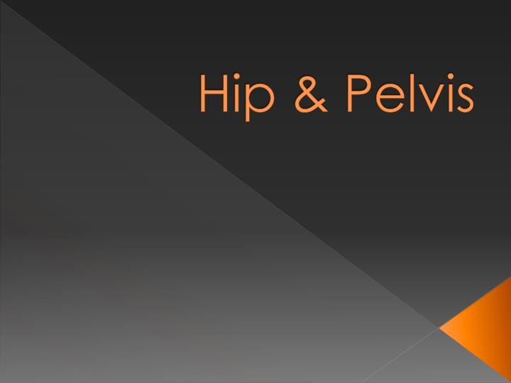 Hip pelvis