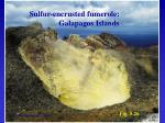 sulfur encrusted fumerole galapagos islands