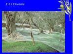 das oliven l