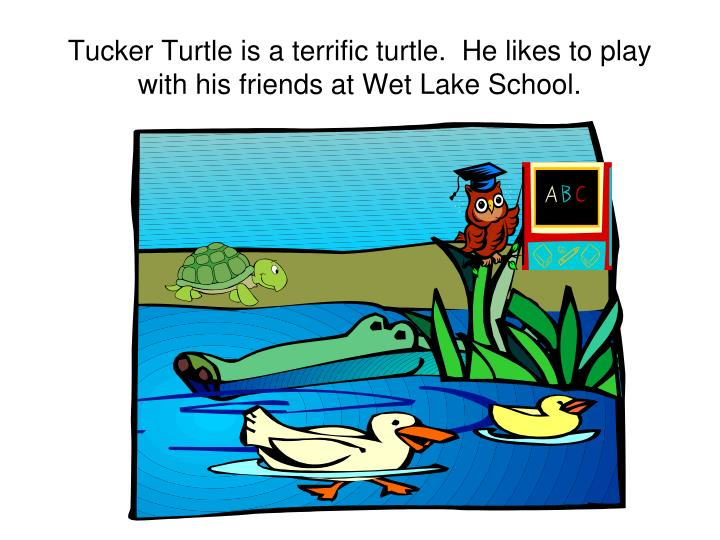 Tucker turtle is a terrific turtle he likes to play with his friends at wet lake school