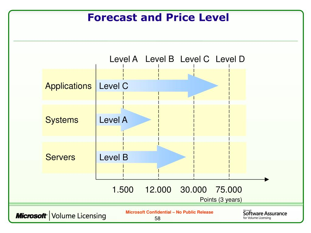 Forecast and Price Level