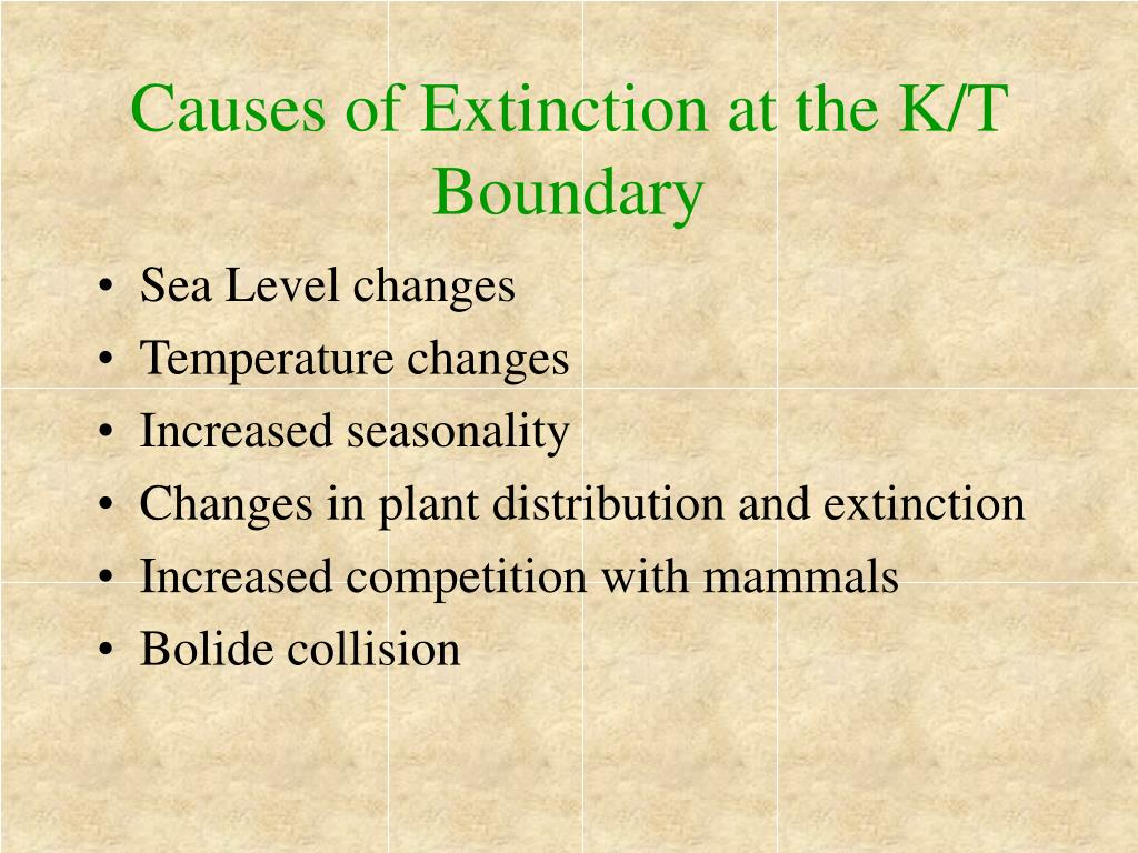 Causes of Extinction at the K/T Boundary