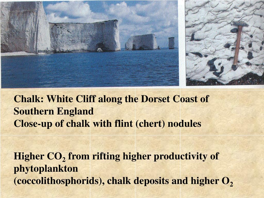 Chalk: White Cliff along the Dorset Coast of Southern England