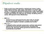 p padov studie133