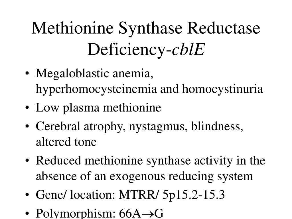 Methionine Synthase Reductase Deficiency-