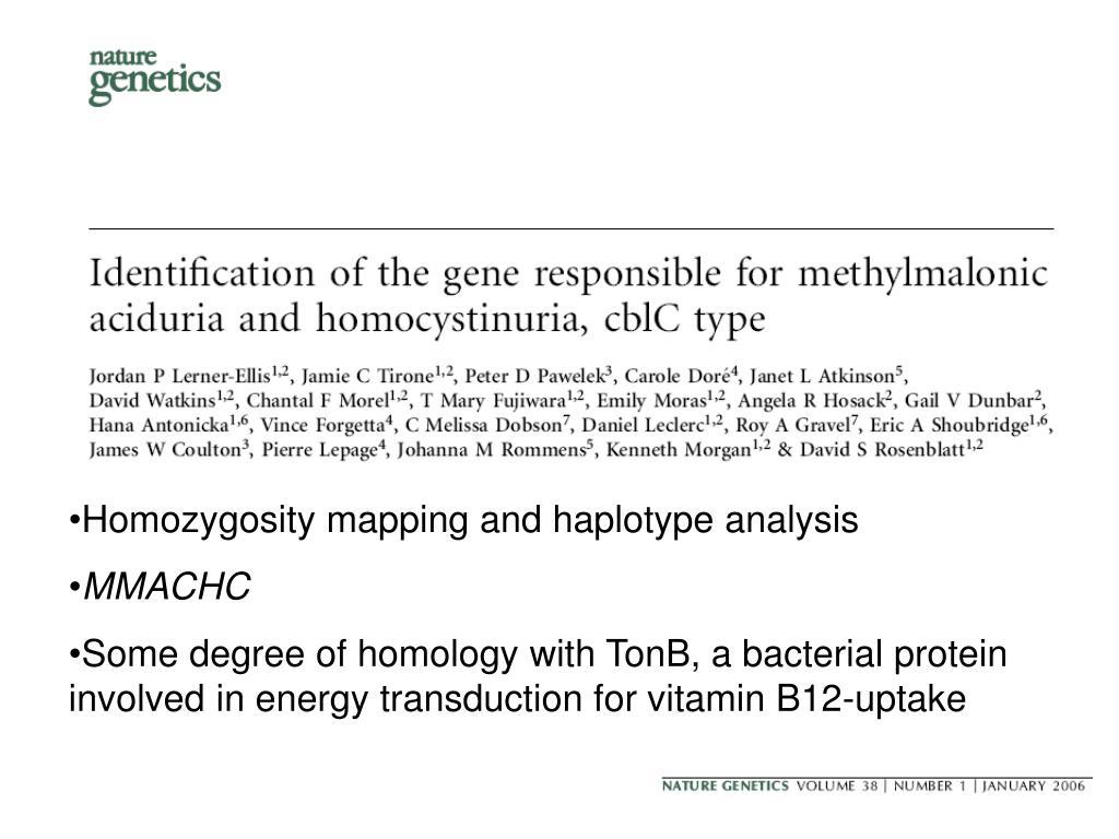 Homozygosity mapping and haplotype analysis