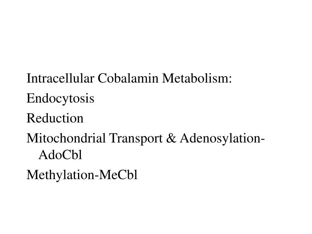 Intracellular Cobalamin Metabolism: