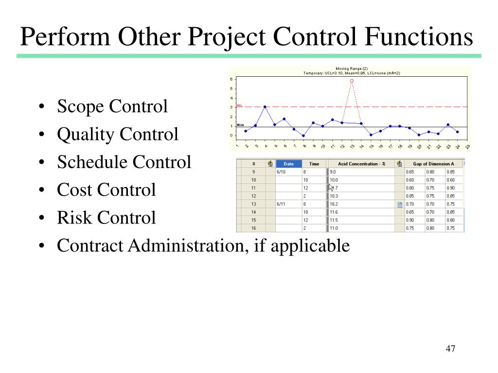 Perform Other Project Control Functions