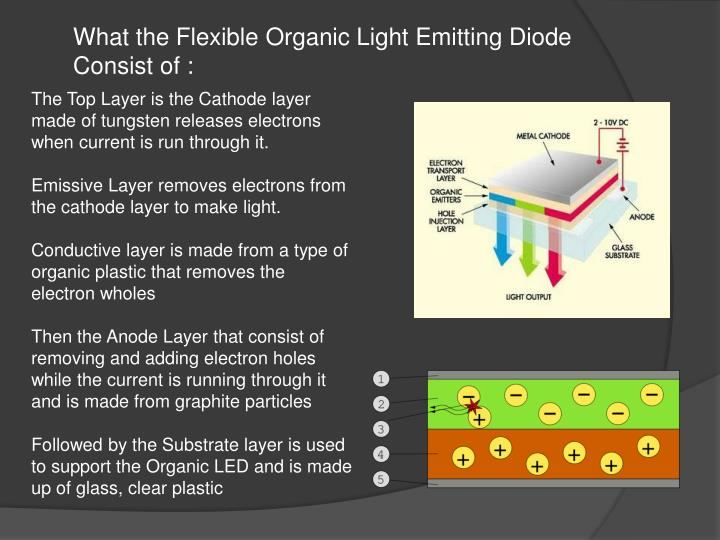What the Flexible Organic Light Emitting Diode Consist of :