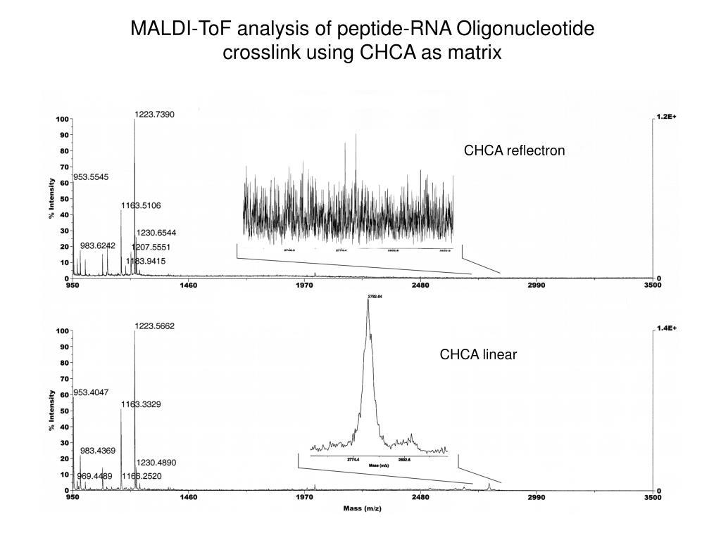 MALDI-ToF analysis of peptide-RNA Oligonucleotide