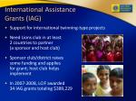 international assistance grants iag
